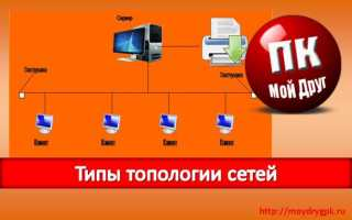 Топология сети: определение, виды, назначение