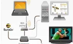 Как узнать пароль и разблокировать взрослые каналы в Билайн-телевидение