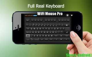 Скачать программу wifi mouse pro на компьютер. WiFi Mouse HD (Wi-Fi мышь из смартфона)