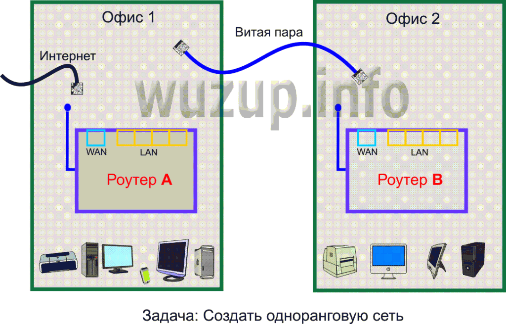 network-1024x655.png