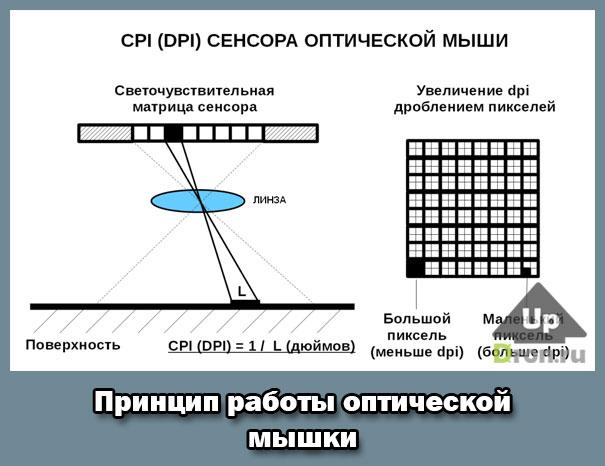 log-dpi.jpg