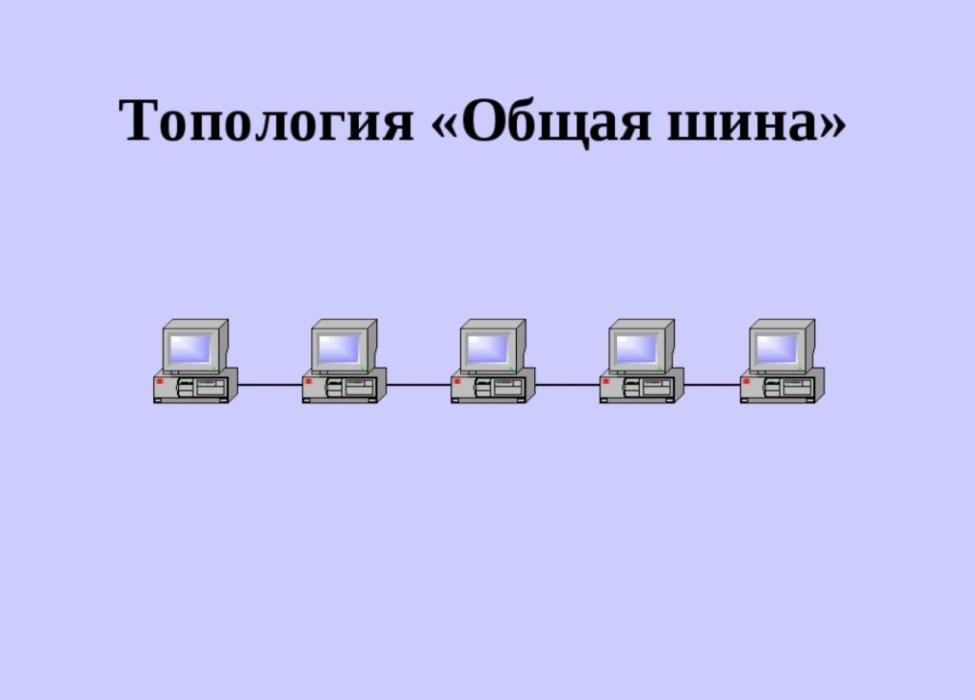 topologia-shina-1024x735.jpg