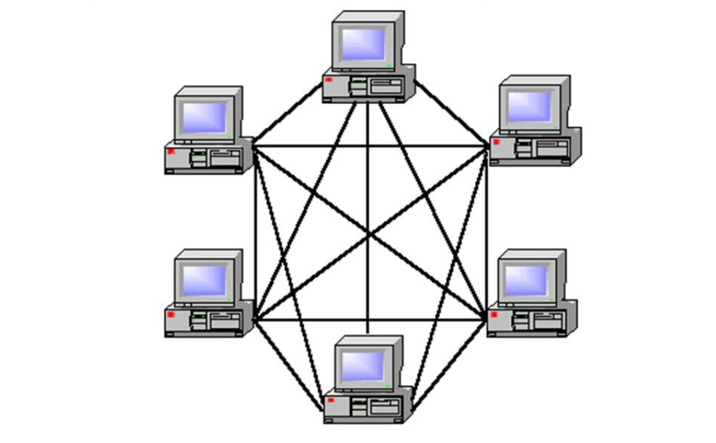 setochnaia-topologia.jpg