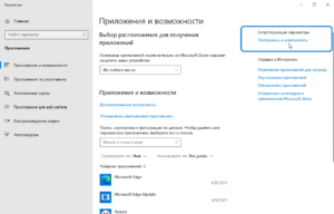 alice-yandex-how-to-instal-disable-screenshot-5-300x192.png