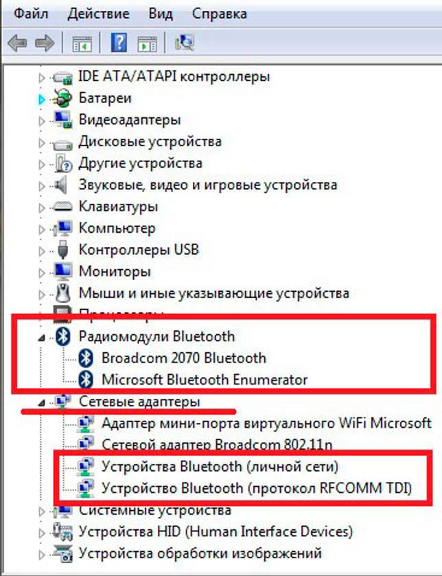 poteryal-blyutuz-ot-mishki-chto-delat-budet-li_3.jpg
