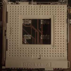 socket-4.jpg