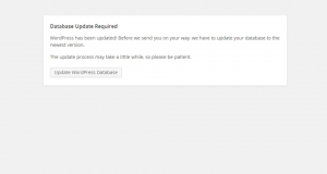 Wordpress_Troubleshooter.Missing_images_after_the_installation_8-300x160.png