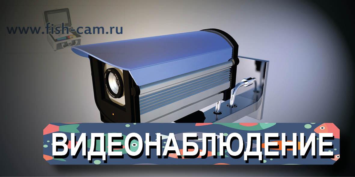 fish-cam-04.jpg