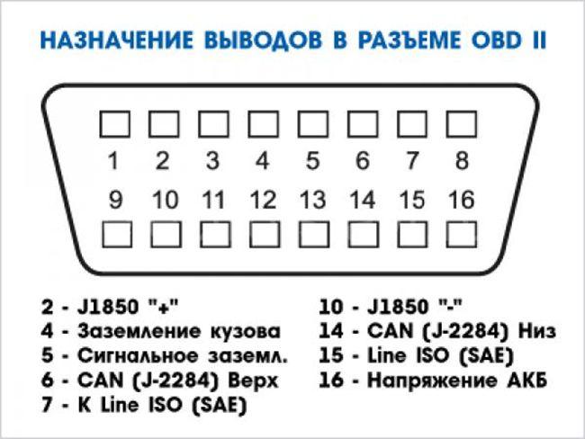 raspinovka-elm-327.jpg