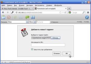 9-Parametry-klienta-BitTorrent-300x211.jpg