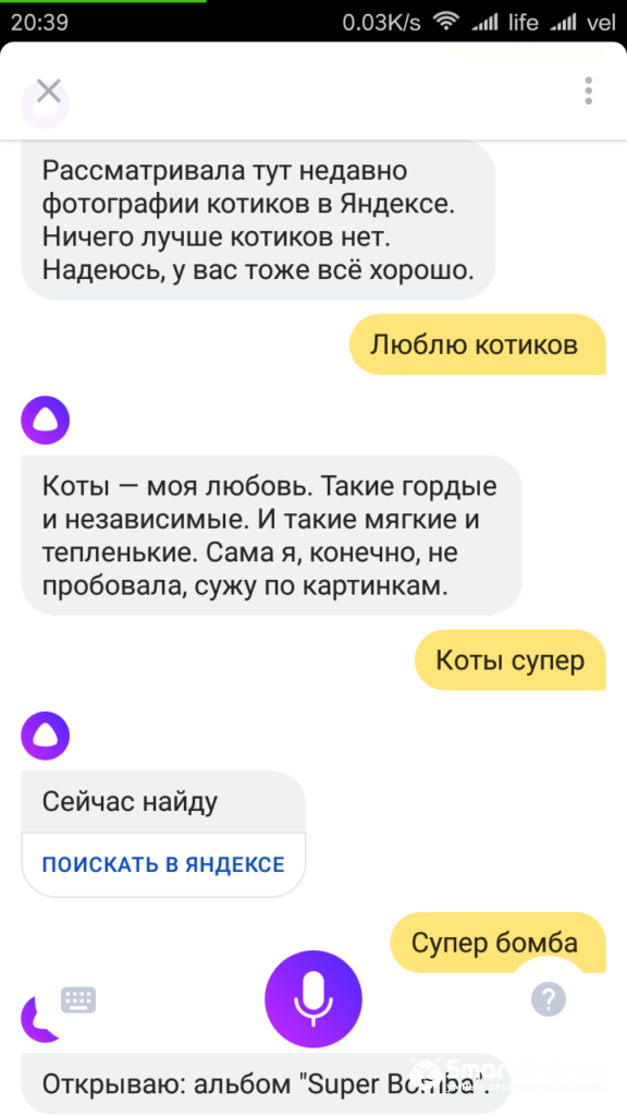 Screenshot_2017-10-11-20-39-55-904_ru.yandex.searchplugin.beta_-576x1024.png
