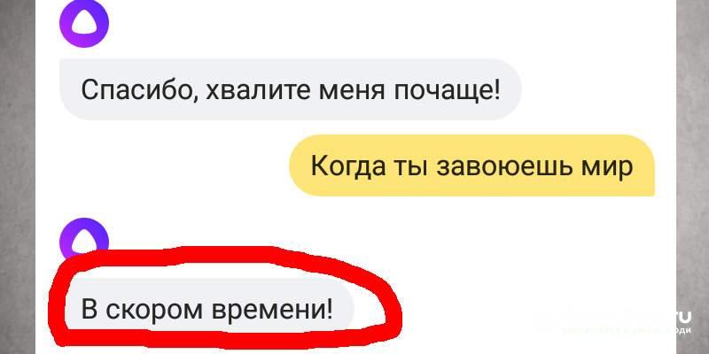 YAndeks-Alisa-ne-doveryaj-1.jpg