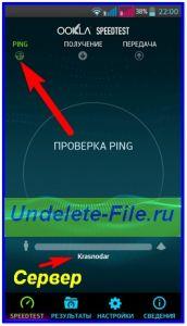 Проверка-пинг-172x300.jpg
