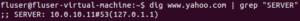 ubuntu-dig-command-300x21.png