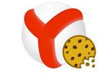 куки в Яндекс Браузере