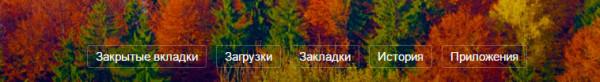 yandex-zakladki-2-600x82.jpg