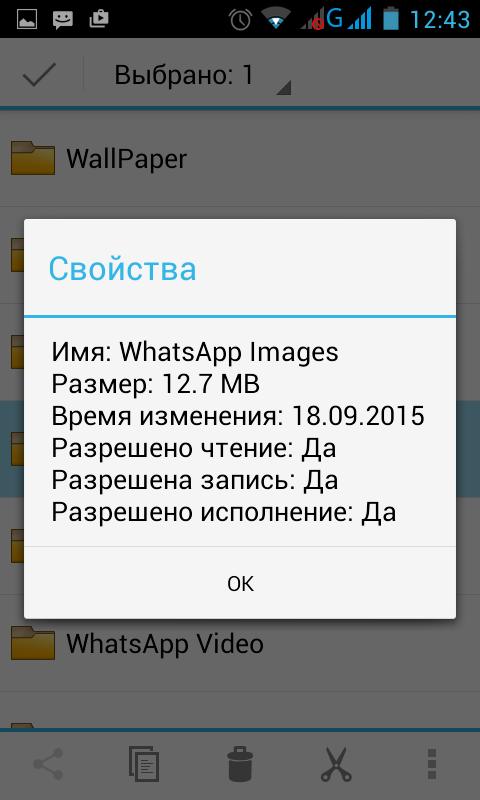 objem-faily-whatsapp.png