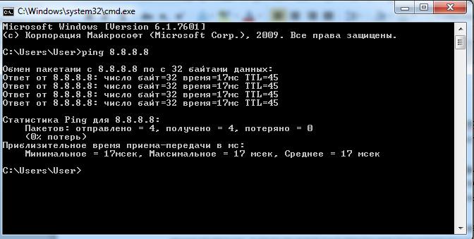 Результат-выполнения-команды-Ping.jpg