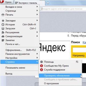 kak_ustanovit_brauzer_opera8-300x300.jpg