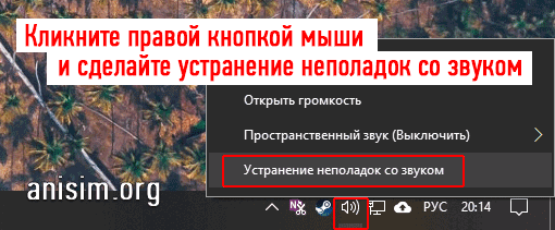 net-zvuka-na-kompyutere-3.png