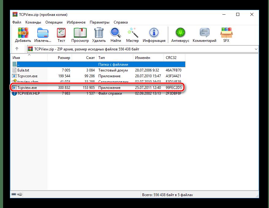 Zapusk-programmyi-TCPView.png