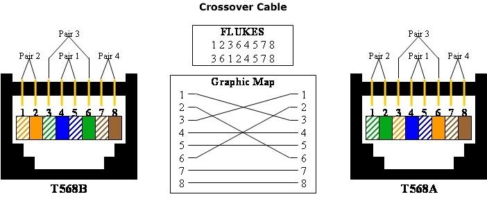 c5930368cc.jpg