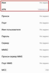 Nastrojjka-mobilnogo-interneta12-203x300.jpg
