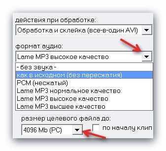 MP4_in_AVI6.jpg
