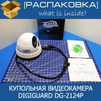 raspakovka-digiguard-dg-2124p-200x200.jpg